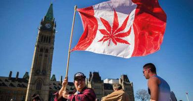 Október 17-én nyílnak a kanadai fűboltok
