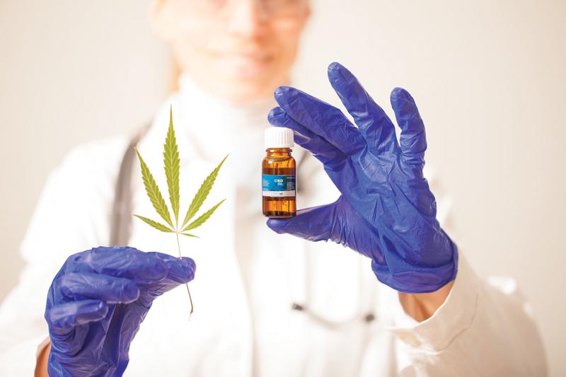 Nincs jó és rossz kannabinoid - CK Medijuana