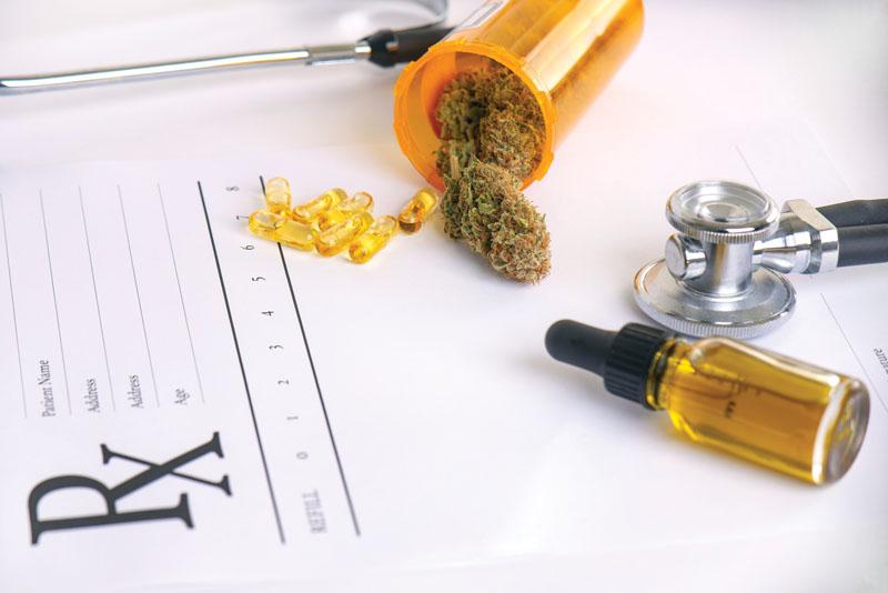 Az endokannabinoid rendszer szerepe az OCD kezelésében - CK Medijuana